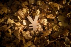 Yen eller Yuan Currency Symbol p? Autumn Leaves i sol f?r sen afton royaltyfria bilder