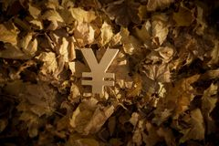 Yen of Yuan Currency Symbol op Autumn Leaves in Recente avondzon royalty-vrije stock foto's