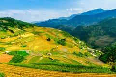 YENBAI,越南- 2014年5月18日-从山的峰顶观看的露台的领域的秀丽 免版税库存图片