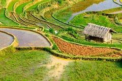 YENBAI,越南- 2014年5月18日-从山的峰顶观看的露台的领域的秀丽 免版税图库摄影