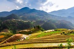 YENBAI,越南- 2014年5月18日-运载一个传统犁的一位未认出的种族农夫去领域 库存照片