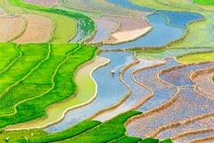 YENBAI, VIETNAM - 16 maggio 2014 - vista dei terrazzi degli agricoltori etnici nella stagione di riempimento dell'acqua Immagine Stock