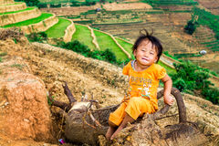 YENBAI, VIETNAM - MAY 18, 2014 - An unidentified ethnic child sitting nearby rice terraces royalty free stock image