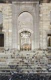 Yeni Cami Enterance Royalty-vrije Stock Fotografie