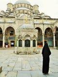 Yeni Camii Стамбул индюк стоковое изображение rf