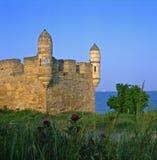 Yeni-grönkålars torn - Krim arkivfoton