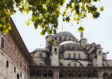 Yeni mosque. View of Yeni mosque in Eminonu/Istanbul through tree Royalty Free Stock Images