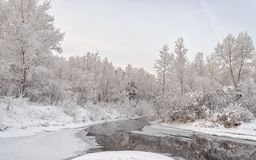 The Yenisei Canal. The hose of the Yenisei River or the Yenisei River in winter. The banks and trees are covered with snow and frost. Khakassia. Siberia Royalty Free Stock Image