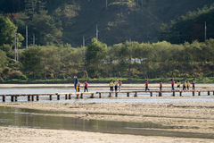 YEONGJU, KOREA - OCTOBER 15, 2014:  people on a single lane brid Royalty Free Stock Images