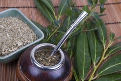 yerba сторновки ответной части чашки стоковая фотография rf