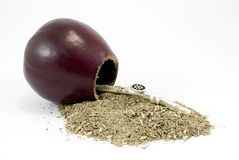 Yerba mate Stock Image