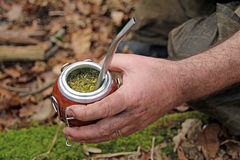 Yerba mate gourd and bombilla straw Stock Image
