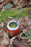 Yerba mate gourd and bombilla straw Royalty Free Stock Photo