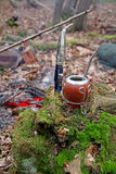 Yerba mate and knife in woods Stock Image