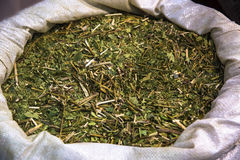 Yerba Mate Tea Image stock