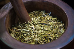 Yerba mate tea. Traditional South American yerba mate tea. Selective focus stock photo