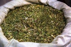 Yerba mate tea. Traditional South American yerba mate tea. Selective focus Stock Image