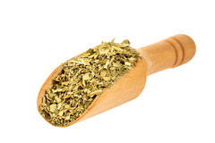 Yerba mate with a wooden spoon on isolate. A white background Stock Photography