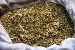 Yerba szturmanu herbata Fotografia Stock