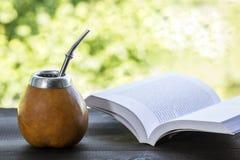 Yerbapartner in pompoenmatero met open boek Stock Foto's