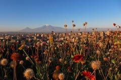 Yerevan com Ararat Fotografia de Stock Royalty Free