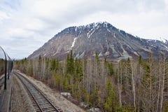 Yermo de Alaska imagenes de archivo