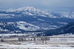 Yermo de montaña en invierno Imagen de archivo
