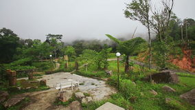 Yersin House Back Site against White Thick Mist in Mountains. Panorama of Yersin house back site with tropical plants in mountains against white thick mist stock footage