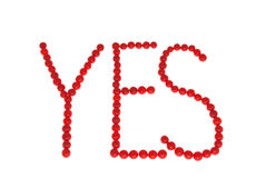 YES geschrieben durch Beeren von Viburnum Lizenzfreies Stockfoto
