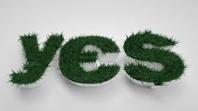 YES letters. Spring, flowers and grass. Path Stock Image