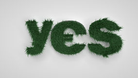 YES letters. Spring, flowers and grass. Path Royalty Free Stock Photos