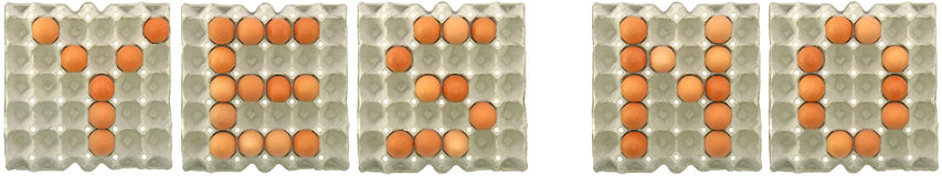 YES NO word from eggs in paper tray Royalty Free Stock Photography