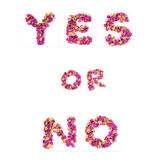 Yes or no word. Isolated on white Stock Photography