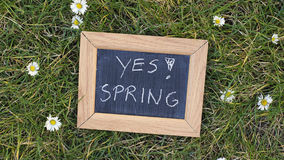 Yes! Spring Stock Photos