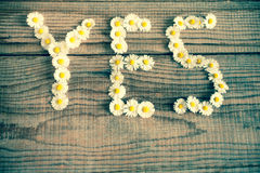 Yes wrote with daisies. On wooden background Stock Photos