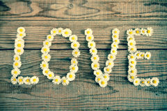Yes wrote with daisies on wooden background Stock Photo
