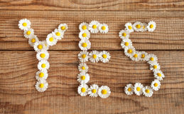 Yes wrote with daisies on wooden background Royalty Free Stock Images