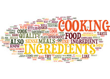 Yes You Can Be A Food Gourmet And A Skilled Gourmet Cook Too Text Background  Word Cloud Concept. YES YOU CAN BE A FOOD GOURMET AND A SKILLED GOURMET COOK TOO Royalty Free Stock Image