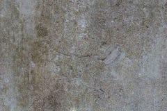 Yeso del cemento - estructura del yeso coloreado del cemento, backgroun Imágenes de archivo libres de regalías