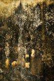 Yeso ocre asustadizo abstracto fotografía de archivo libre de regalías