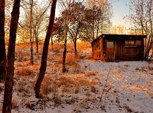 But yesterday it was summer ... First snow in the garden near an abandoned hut at sunset Royalty Free Stock Images