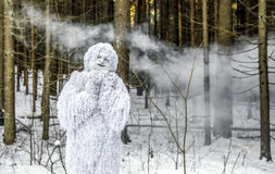 Yeti bajki charakter w zimy fantazi lasowej Plenerowej fotografii Fotografia Stock