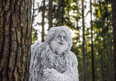 Yeti fairy tale character in winter forest. Outdoor fantasy photo. Yeti fairy tale character in winter forest. Outdoor fantasy photo Royalty Free Stock Photos