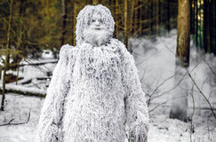 Yeti fairy tale character in winter forest. Outdoor fantasy photo. Yeti fairy tale character in winter forest. Outdoor fantasy photo Stock Photo