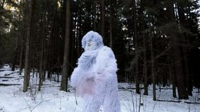 Yeti fairy tale character in winter forest. Outdoor fantasy slow motion footage. stock video
