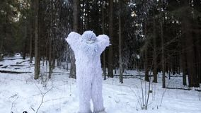 Yeti fairy tale character in winter forest. Outdoor fantasy slow motion footage. stock video footage