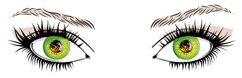 Yeux illustration stock
