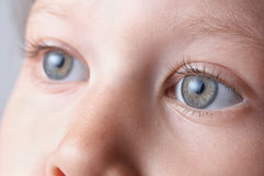 Yeux Image stock