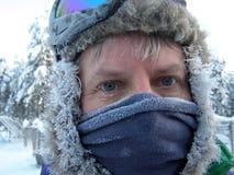 Yeux bleus glacés en Laponie photographie stock libre de droits