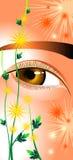 Yeux comme chrysanthemums illustration libre de droits